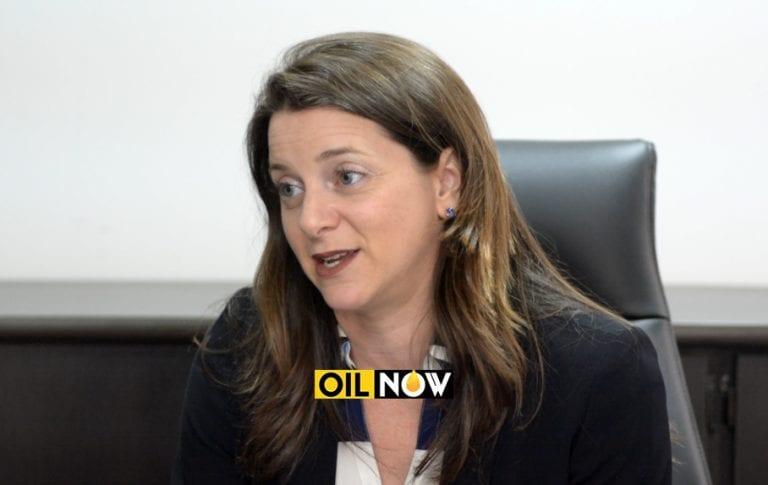 ExxonMobil 'passionate' about gas to shore project but no final decision yet – Brasington