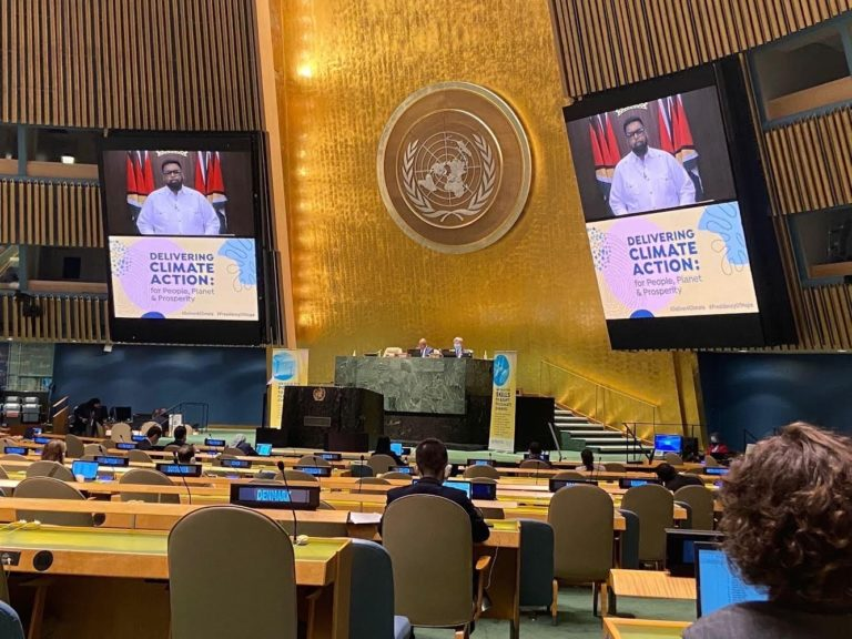 Climate change: President Ali implores UN to act with urgency to protect humanity